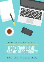 Work from home business / income opportunity