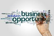 Looking for Business Partners No Investment!
