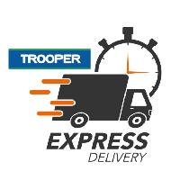 Express Delivery/Move $60 - Trooper Moves