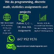 I do web development, statistics, business automation projects