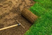$20/HOUR Hiring manual labour worker for landscaping