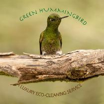 ECO-CLEANING SERVICES