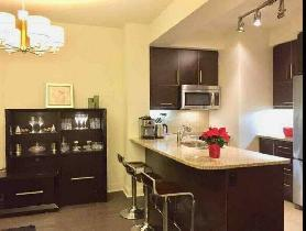 Yorkville Lux furnished 1 1 Condo great View, Parking & locker!
