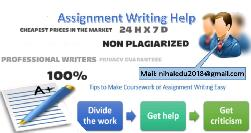 BEST ESSAY WRITING ! (negotiable rates)