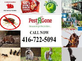 10% OFF-Free Estimate-Bed Bugs Exterminator Expert:416-722-5094