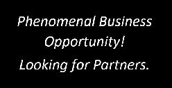 Looking for an automotive business partner for securing a lease