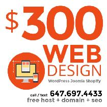 YOU NEED A WEBSITE for your small business / you need it ASAP!
