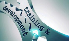 Software training and development